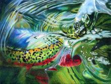 'Rainbow Release' by Rosi Oldenburg
