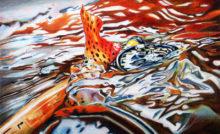 'Splash' by Rosi Oldenburg