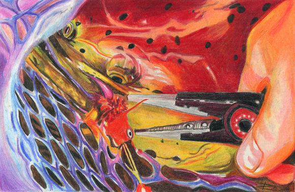 'King Salmon In Net' by Rosi Oldenburg