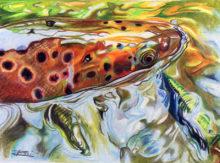'Brownie Hooked' by Rosi Oldenburg