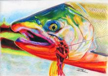 'Coho Salmon' by Rosi Oldenburg
