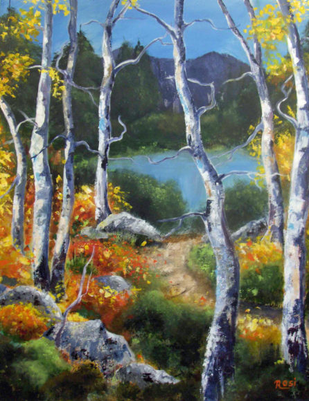 'Enchanted Forest' by Rosi Oldenburg